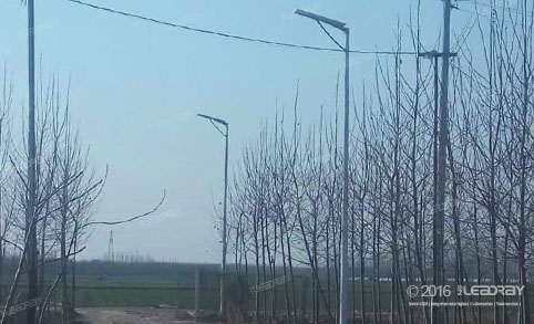 40W Stand Alone Solar Street Light For Farm Application